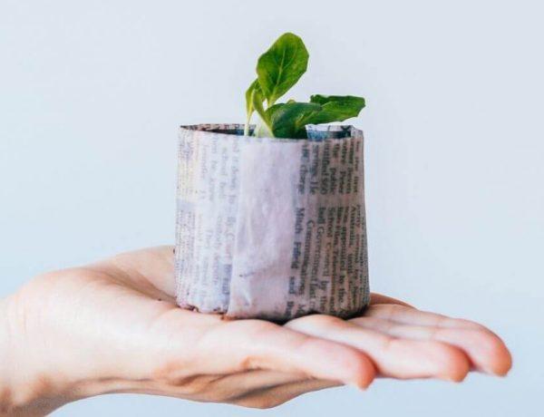 devenir écolo : liste des gestes simples pour protéger l'environnement