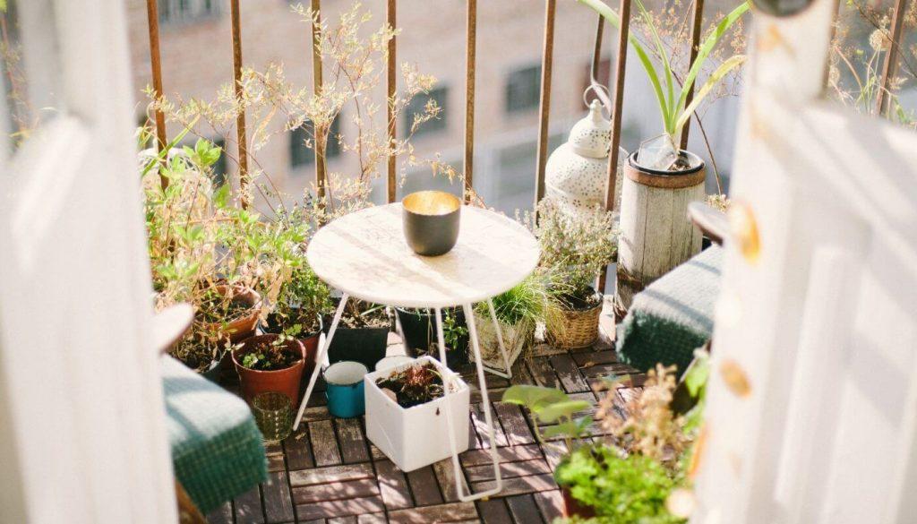Planter des fleurs sur son balcon d'appartement pour nourrir les abeilles en ville.