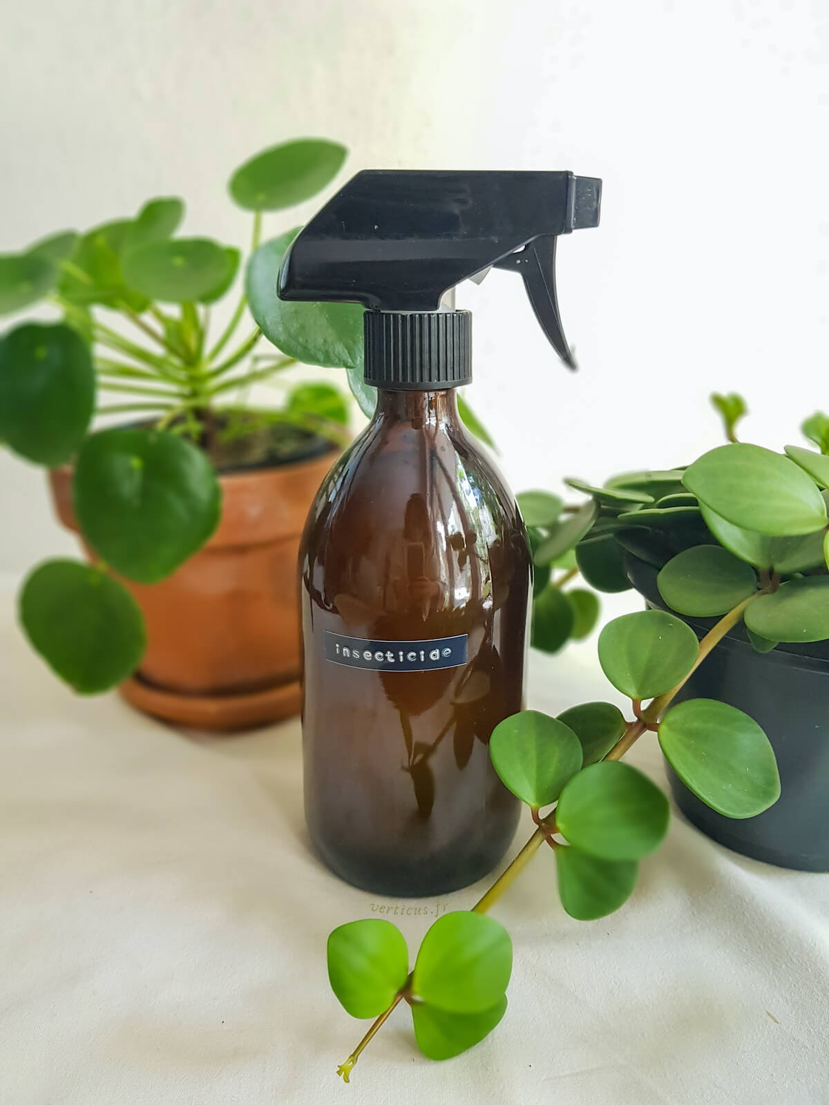 Recette d'insecticide naturel au savon noir pour les plantes