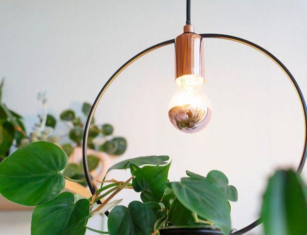 Quel fournisseur d'électricité verte choisir ?