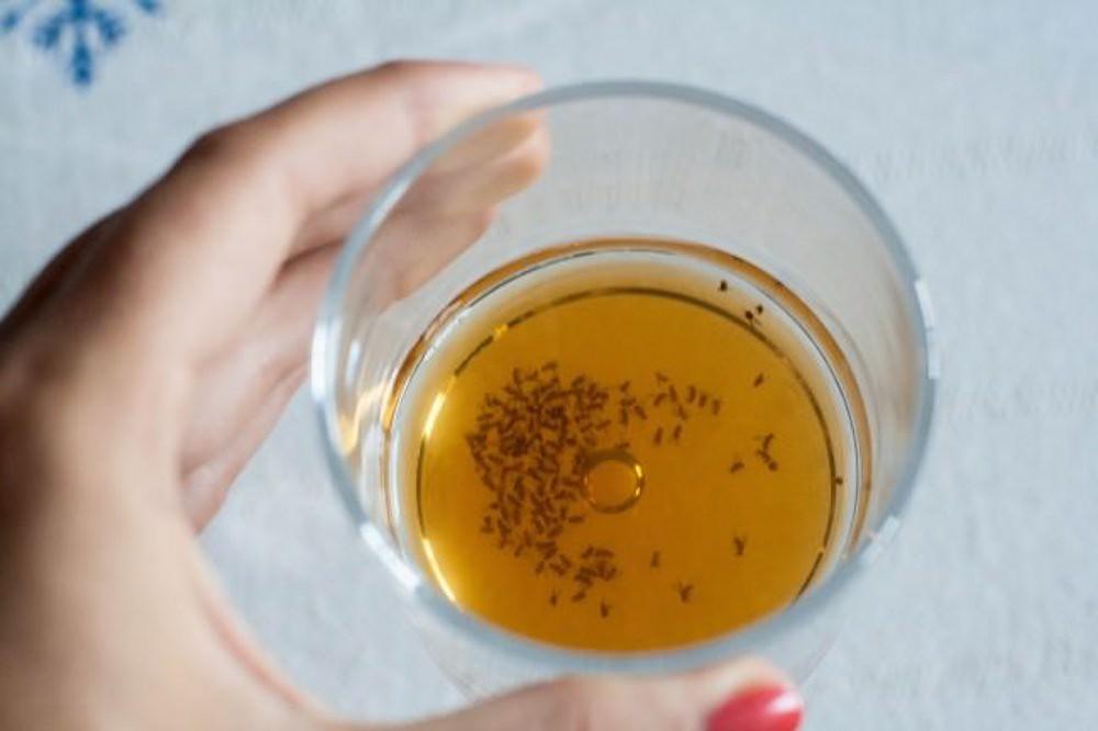 Huiles essentielles et astuces naturelles pour se débarrasser des moucherons
