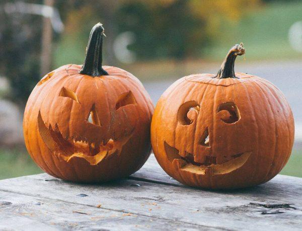 Citrouilles décorées pour Halloween