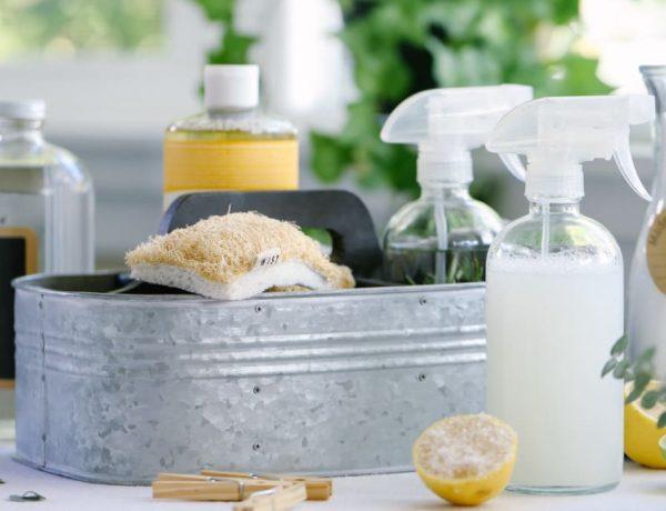 Ingrédients naturels et produits d'entretien maison