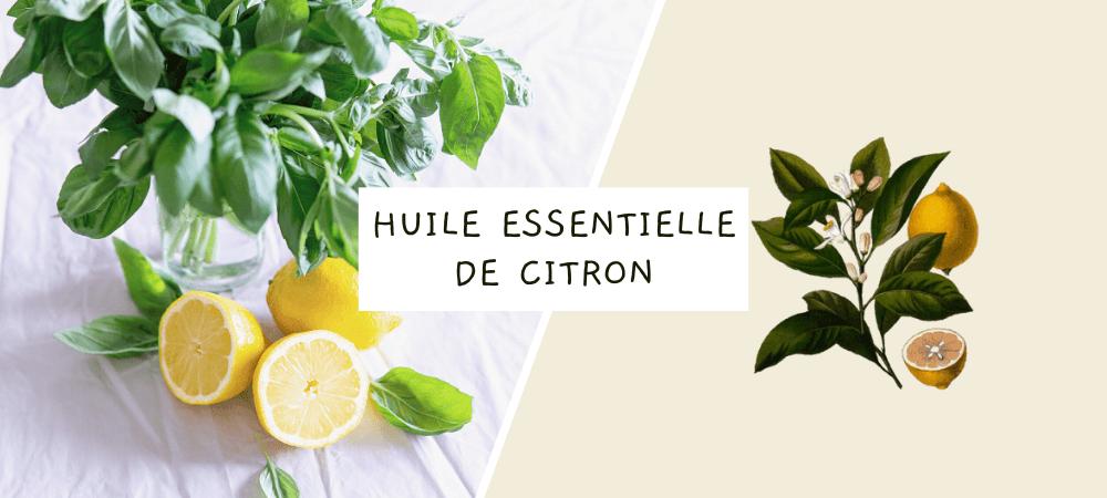 Huile essentielle de citron : propriétés, bienfaits et utilisation