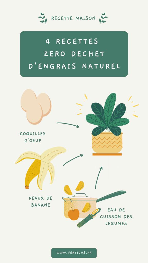 Recettes d'engrais naturels pour des plantes d'intérieur en bonne santé