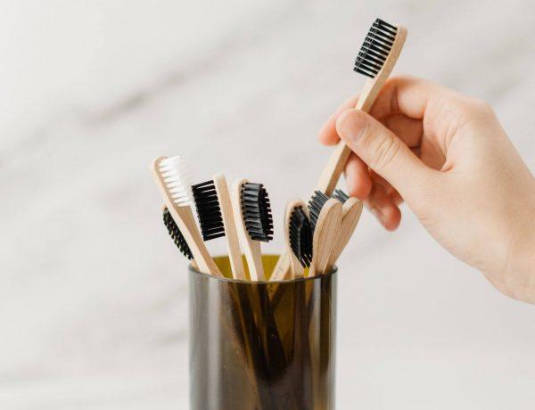 Brosse à dents écologique en bambou ou boi